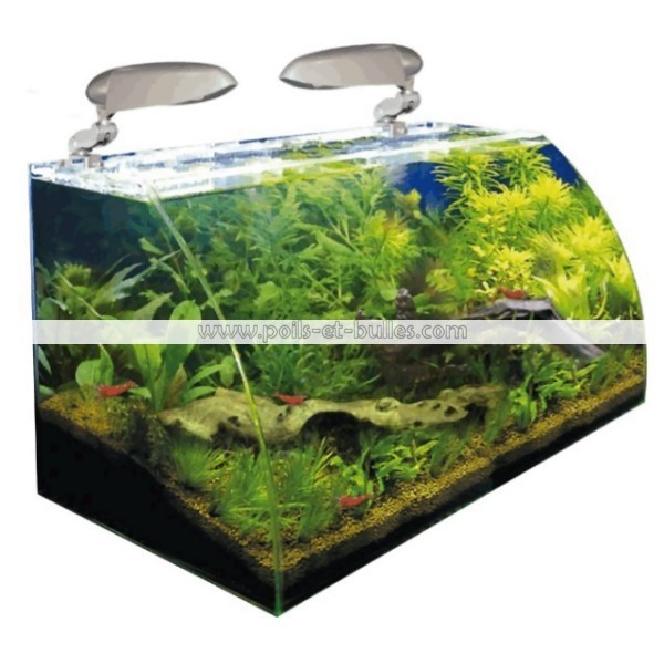 aquarium wave box vision 60 cosmos eau douce
