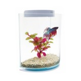 MARINA Betta Kit Half Moon - Aquarium pour combattant