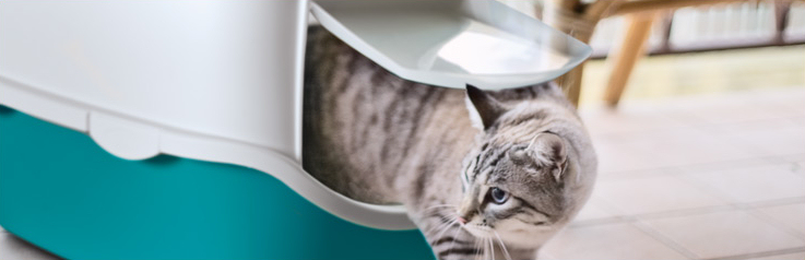 Bac à litière fermé Cathy pour chat